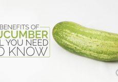 cucumber-image-design-1-980x537